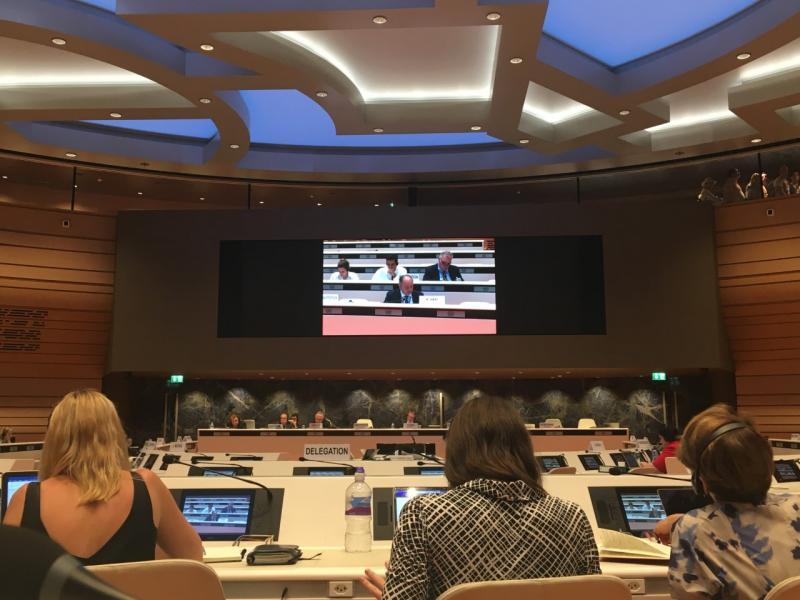 To Ελληνικό Συμβούλιο για τους Πρόσφυγες στην 67η συνεδρίαση της Επιτροπής του ΟΗΕ κατά των βασανιστηρίων στη Γενεύη